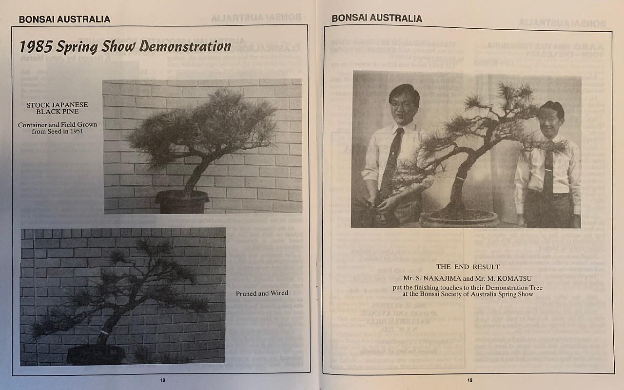 nakajima komatsu 1985 demo pine